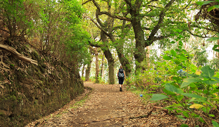 Madeira - Hiking is a Great Way to Discover Madeira