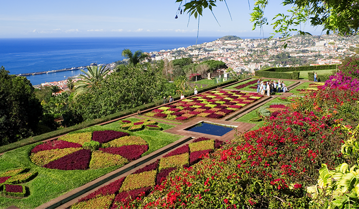 Madeira - Find Luxurious Gardens Around the Island