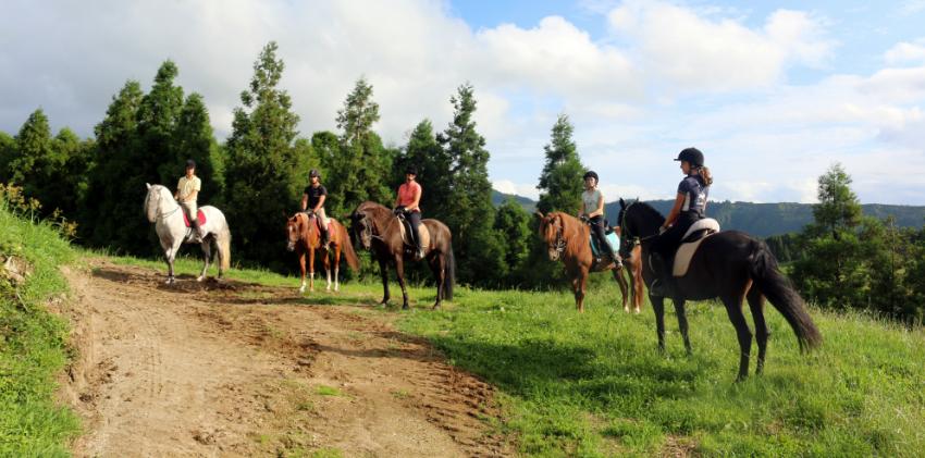 Azores, São Miguel Island - Horse riding tour